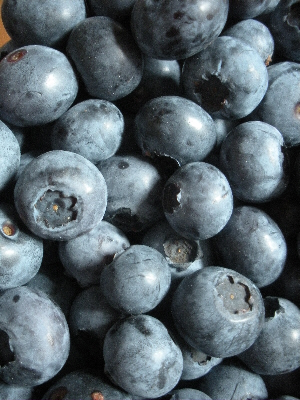 Irish blueberries