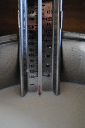 homemade mozzarella - thermometer