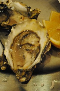 Bibliocook.com - Irish oysters