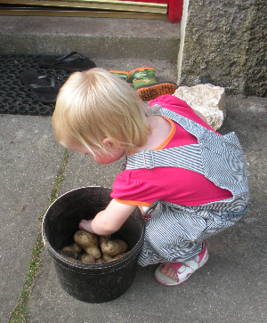 Little Missy with her newly picked potatoes