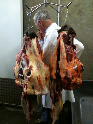 Slow Food, Lismore - Butcher Michael McGrath with a few heads