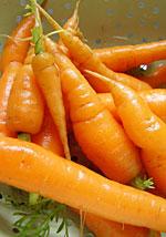 Moriss' baby carrots