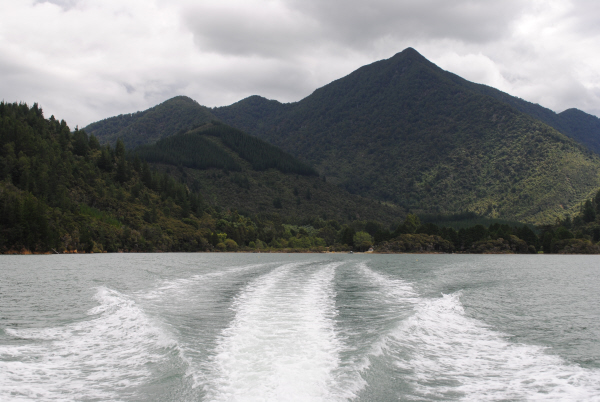 On The Track Lodge, Nydia Bay, Marlborough Sounds, NZ